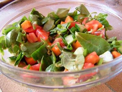 semizotu-salatasi-izmir-usulu